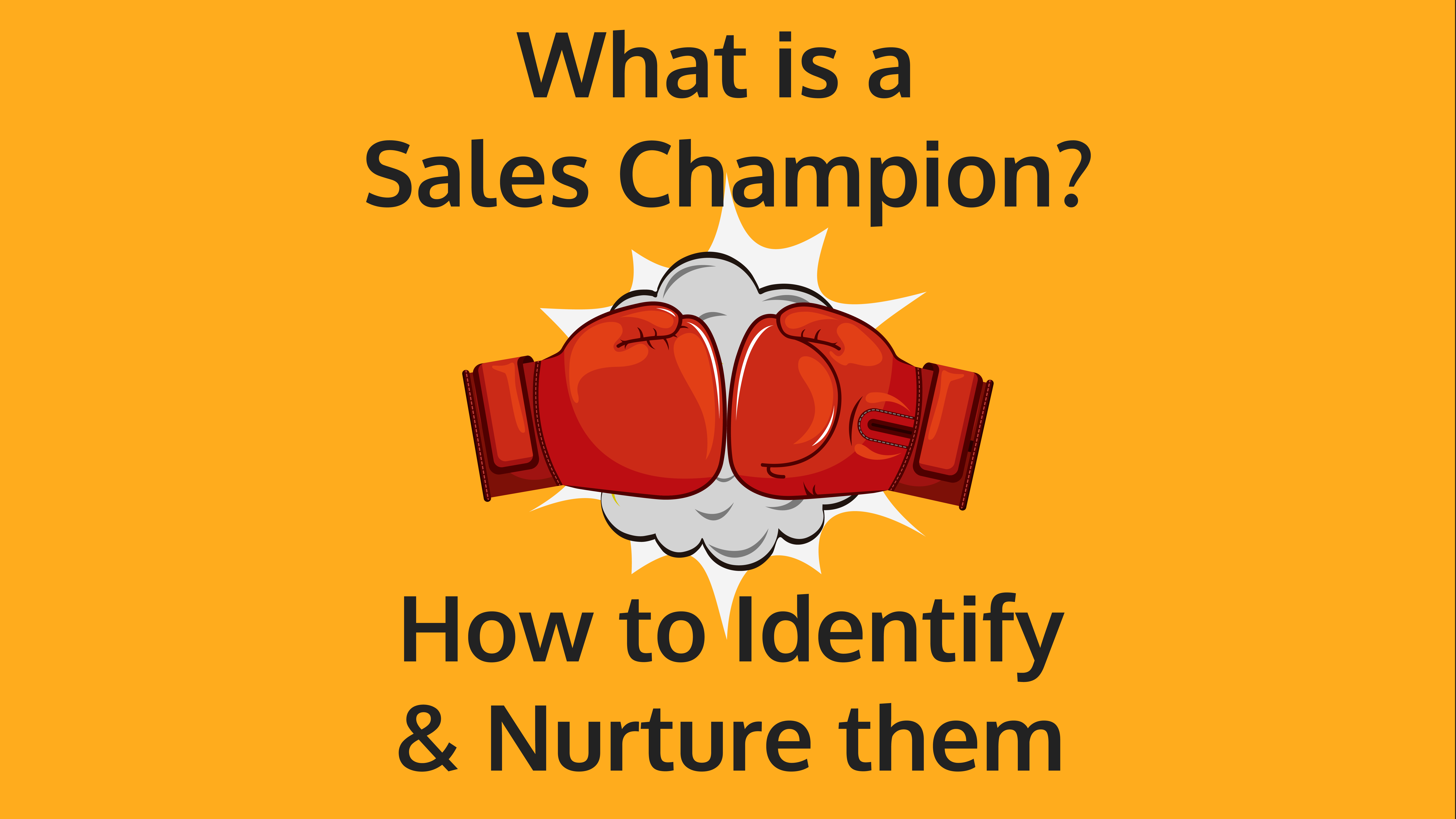 what-is-a-sales-champion