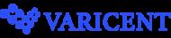 varicent-logo-iseeit